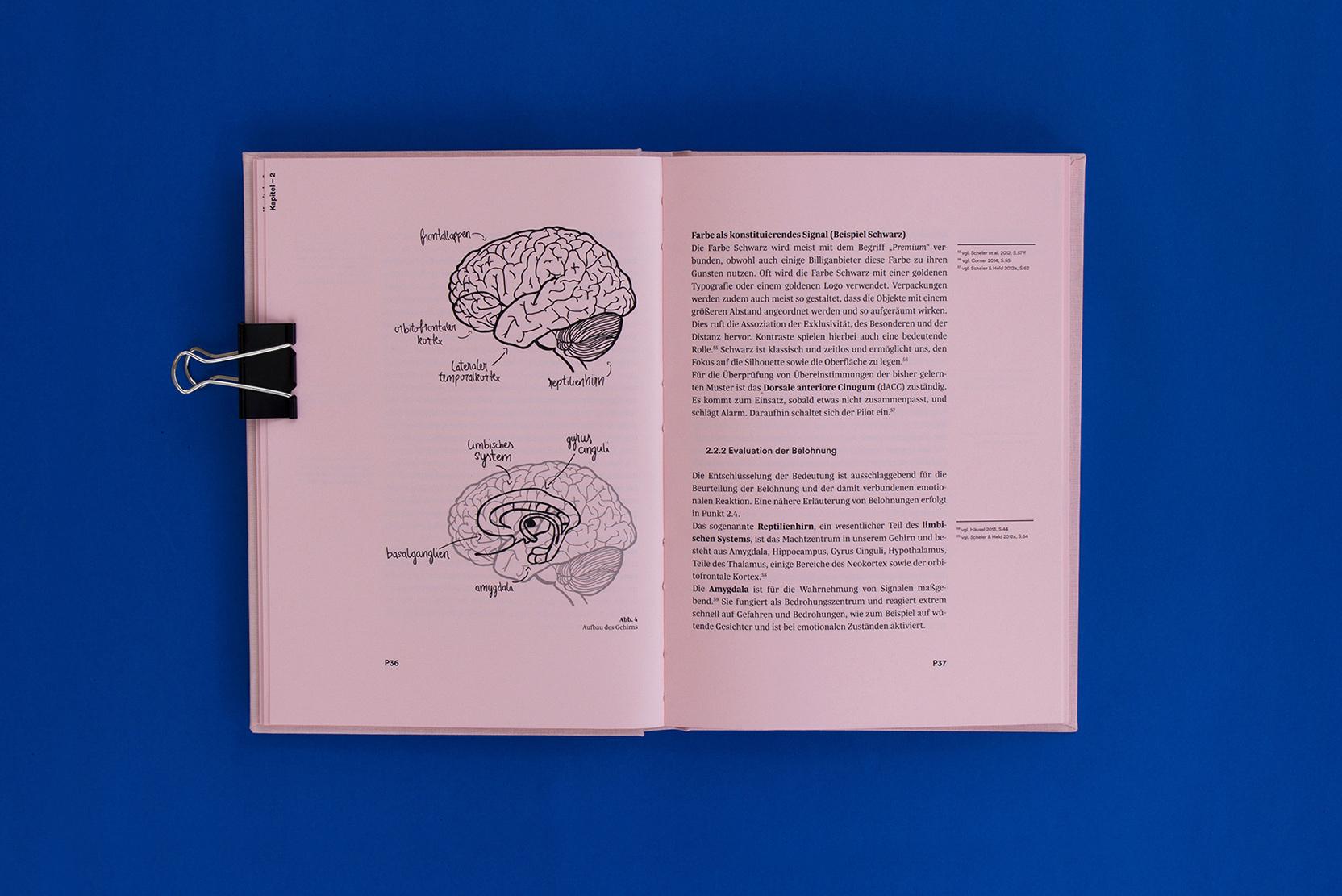Brain-7
